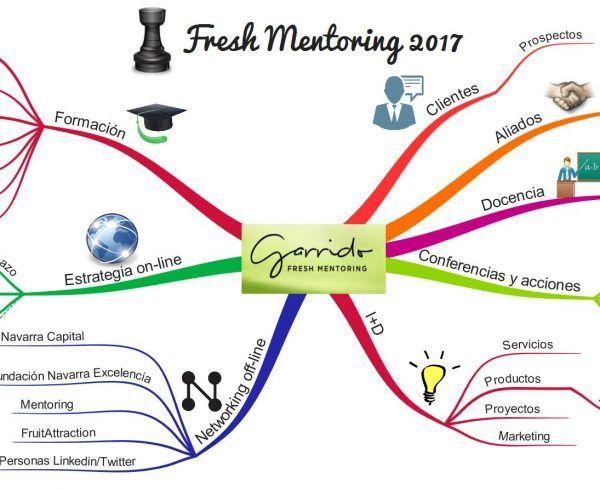 fresh mentoring 2017