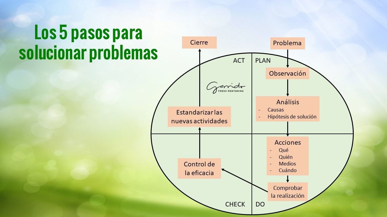5 pasos para solucionar problemas