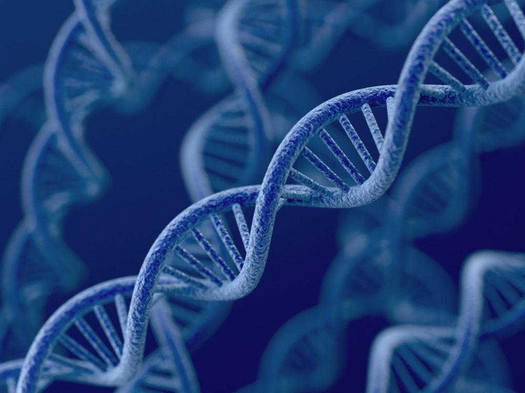 la innovacion y el ADN