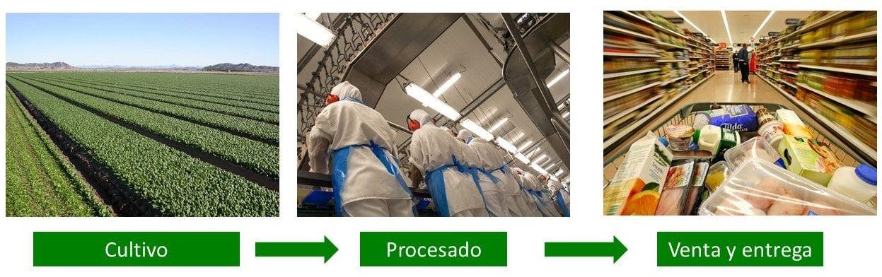 procesobasico2