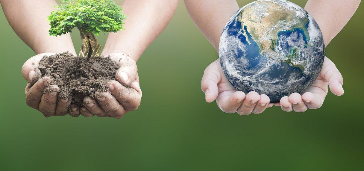 responsabilidad social empresarial agroalimentaria